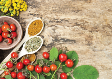 What is A Holistic Nutritionist