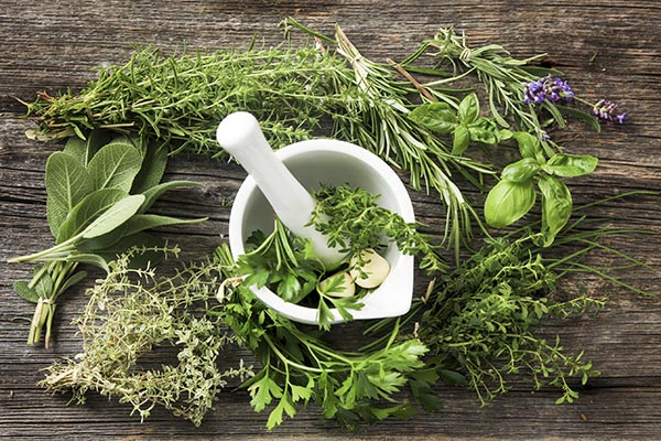 naturopathic and holistic differences