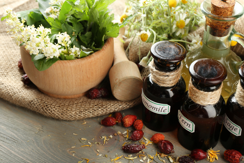 difference between naturopathic and holistic