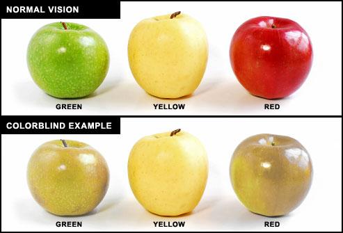 eye lens function