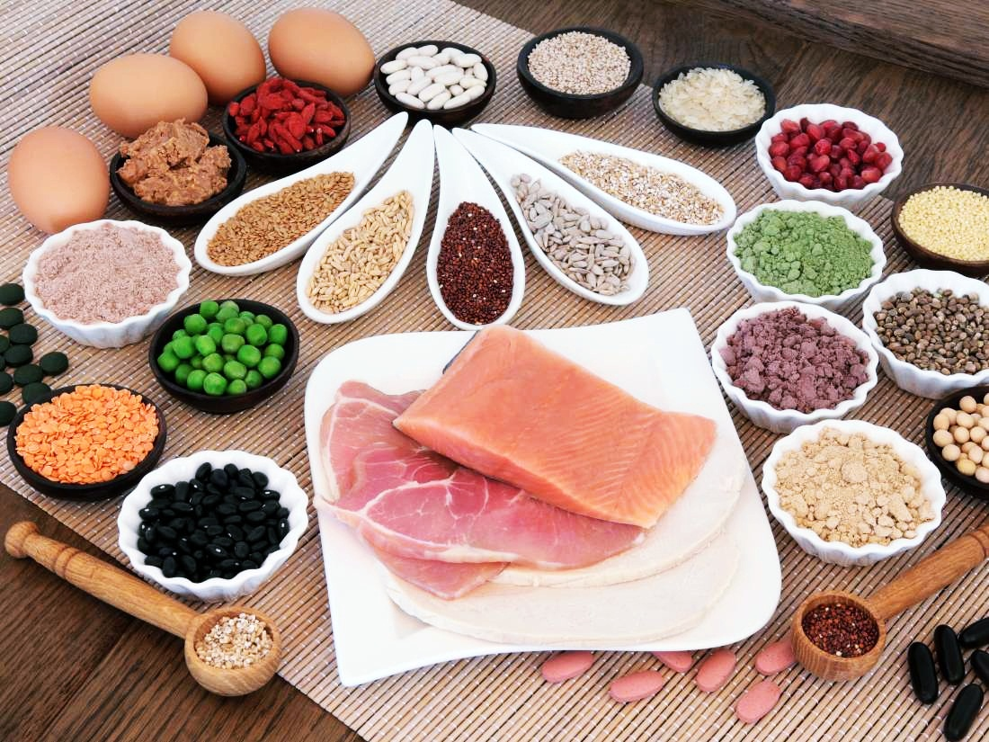 benefits of protein